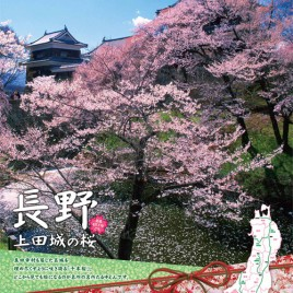 1,000 Cherry Blossoms Festival