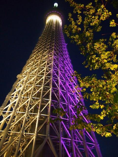 skytree night