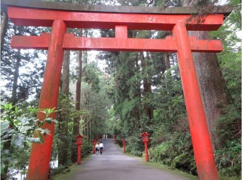 7071056-Hakone_Shrine-Hakone
