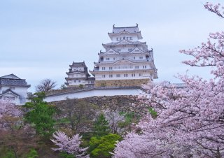 Best of Japan with Japanese Alps: Cherry Blossom 