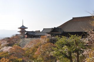 photo of Visit the must see sites of Tokyo & Kyoto by rail