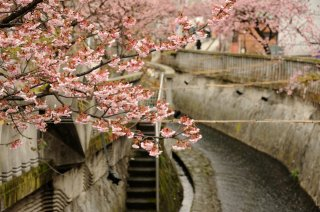 The Golden Route Japan Tour Winter (Reverse): Atami 